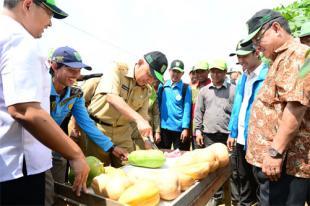Gubri Tinjau Pusat Agribisnis Universitas Islam Riau