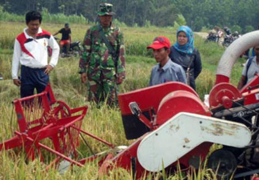 Babinsa 02/Rbh Sosialisasikan Penggunaan Kombine Harvester