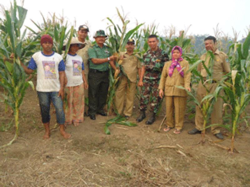 TNI Rohul Bertekad Siap Bantu Pemerintah Mewujudkan Ketahanan Pangan