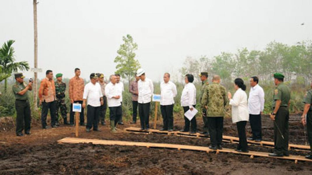 Presiden Jokowi Tinjau Lokasi Bekas Kebakaran di Desa Rimbo Panjang Kampar