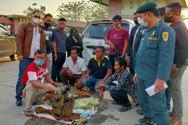Jual Kulit Harimau Sumatera, 4 Pria Ditangkap Tim Gabungan di SPBU